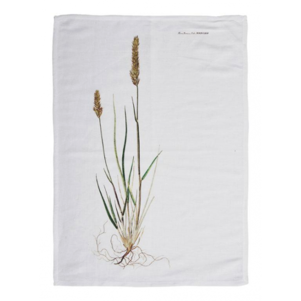 Flora Danica Viskestykke 50 X 70 cm - Græs
