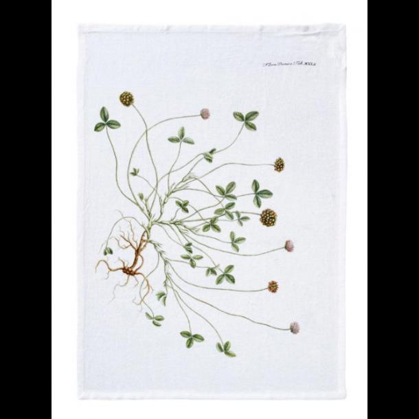 Flora Danica Viskestykke 50 X 70 cm - Vild Kløver