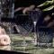 Frederik Bagger Crispy Sapphire Gatsby 2 stk. 30 cl.
