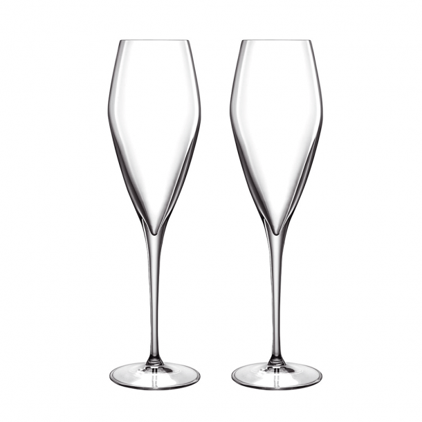 LB Atelier Champagneglas Prosecco 2 stk. Klar - 27 cl.