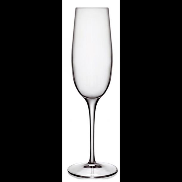 LB Palace Champagneglas 6 stk. Klar - 23,5 cl.