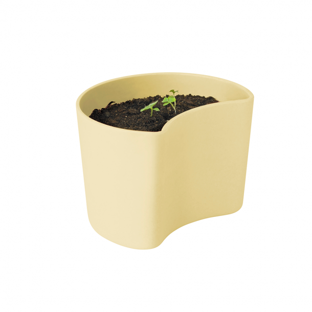 RIG-TIG Your Tree Plantepotte Med Frø Gul